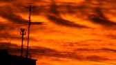anténa : silhouette of TV antenna against the background of a burning sunset