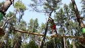 Man climbing the trees in Adventure Park Stok Video