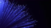 繊維 : Optical fiber sheaf abstract motion background. Glowing bundle of Optic cables loop animation 動画素材