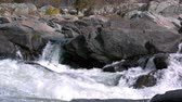 northwest : pan across river rapids and rocks Stock Footage