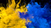 csík : Yellow Blue Color Burst - Multiple colorful smoke powder explosion fluid ink particles slow motion alpha matte isolated on black Stock mozgókép