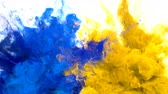 holi : Blue Yellow Color Burst - Multiple colorful smoke powder explosion fluid ink particles slow motion alpha matte isolated on white Stock Footage