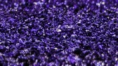 dof : Purple Shiny glitter background abstract texture close up macro seamless loop particles