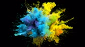 Color Burst iridescent multicolored colorful rainbow smoke powder explosion fluid ink particles slow motion alpha matte isolated on black Stock Footage