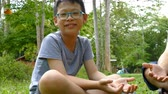 Young asian boy enjoy watching butterflies in forest