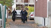 buscar : Group of policemen with K9 dog searching in residential buildings driveway Vídeos