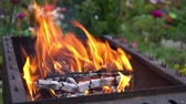 Burning flame at the metal round barbecue, closeup. Bonfire on picnic. Slow motion Stock Footage