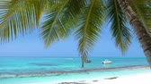 моторная лодка : Yachts and speedboats shipping at the sea. View from Maldives island through coconut palm tree