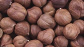 aveleira : Hazelnut closeup. Rotating nuts background