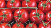 fruit vegetables : Ripe cherry tomatoes rotating