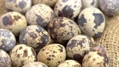 sack : Uncooked quail eggs on burlap cloth. Rotating and closeup