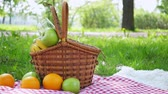 checkered : Vegan picnic with healthy food in park outside at summer day