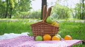 vime : Vegan picnic with healthy food in park outside at summer day