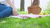 Vegan picnic with healthy food in park outside at summer day