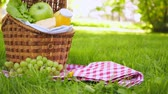Wicker picnic basket with healthy food on red checkered table cloth on green grass outside in park