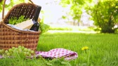 Wicker picnic basket with cheese and wine on red checkered table cloth on grass in park Stock Footage