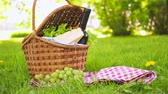 kırmızı şarap : Wicker picnic basket with cheese and wine on red checkered table cloth on grass in park Stok Video
