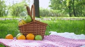 verificador : Vegan picnic with healthy food in park outside at summer day
