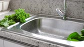 промывали : Washing in water in sink green kale and pok choy cabbage leaves in kitchen
