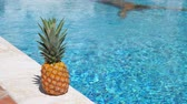 ananas : Pineapple near swimming pool at poolside