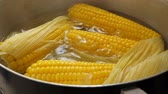 harnblase : Boiling corn at the pan Stock Footage