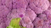 yaprak döken : Purple head of cauliflower cabbage closeup