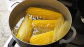 pannocchia : Boiling corn at the pan Filmati Stock