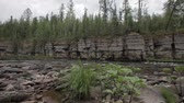 Ancient rocks in the taiga Stok Video