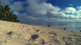 polinésia : Rarotonga Cook Islands Time Lapse Of Seascape With A Couple Of Girls Walking Along Beachfront On Tropical Beach In The South Pacific Ocean On Sunny Day With Cloudy Blue Sky In Polynesia South Pacific