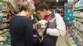 Mom and son wear small white terrier puppy in the store. NOW 24, 2018 MOSCOW, RUSSIA Стоковые видеозаписи