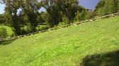 фехтование : Picturesque hillside with grass, trees and a footpath with wooden handrails. Countryside beauty