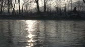 yansıma : Morning light over river slow motion Stok Video