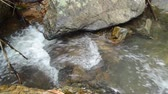 water falling on river pass rock and stone in forest