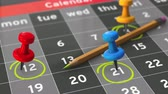 Event calendar with check mark. 4K UHD animation.