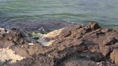 океан : sea wave attacks the boulders and is broken about them