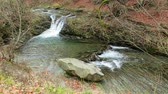 wild : beautiful waterfall comes out of a huge rock in the forest Stock Footage