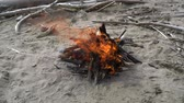 Bonfire burns on the beach close up in slow motion