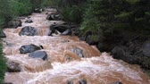 Brown mountain river in the rain, slow motion Dostupné videozáznamy