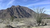 selva : anza borrego ocotillo mountain Stock Footage