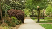 dorm : tree lined path on college campus