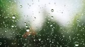 etkileri : Beautiful rain drops fall in slow motion. Loop
