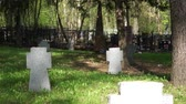 memories : old military cemetery Stock Footage