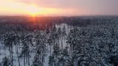 glacé : Aerial nordic winter landscape flight over snow mountain forest on sunset.