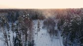 finsko : Aerial footage of flying between beautiful snowy trees in the middle of wilderness in Lapland Finland. Dostupné videozáznamy