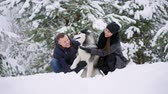 chilly : Woman and man play with dog in snow. Stock Footage