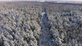 skandynawia : Aerial footage of flying between beautiful snowy trees in the middle of wilderness in Lapland Finland. Wideo