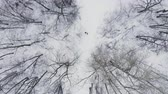 kocogás : Aerial: Man and woman running through woods in winter time Stock mozgókép