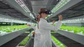 molecuul : Vertical hydroponics plantation man and woman in white coats use virtual reality technologies simulating interface operation