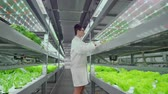 entellektüel : Scientists and farmers work together in a team to create clean plants in an artificial environment using modern technology laptops and tablets Stok Video
