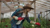 virágárus : Two happy farmers working in a greenhouse with flowers using tablet computers to monitor and record crops for buyers and suppliers of flowers to shops, a small business, and colleagues working Stock mozgókép